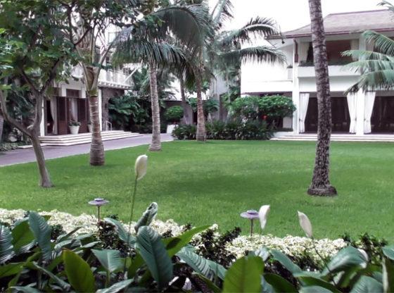 ハレクラニの中庭